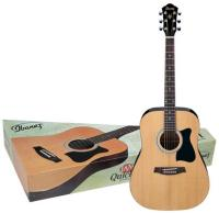 Ibanez IJV50 Quick Start Jam Pack Natural (IJV50NT)